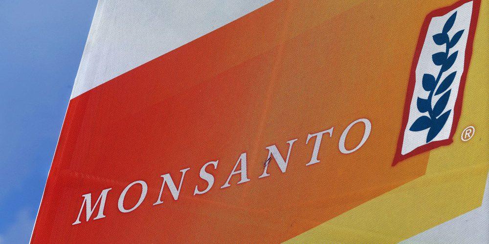 Monsanto domina o setor de sementes transgênicas de milho, trigo e soja. Foto: AP